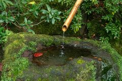 Japanese Bamboo Water Fountain royalty free stock photos