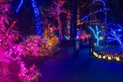 Portland, Oregon, los E.E.U.U., diciembre, 31, 2015: un ensayo de luces en el festival de la gruta de las luces en Portland, Oreg imagenes de archivo