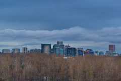 Portland Skyline Nestled in Oaks Bottom Wildlife Refuge Royalty Free Stock Photography