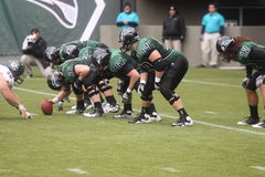 Portland State Vikings football Stock Photos