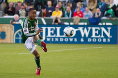 Portland Timbers Royalty Free Stock Photo