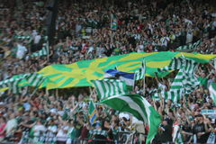 Portland Timbers army after goal Royalty Free Stock Image