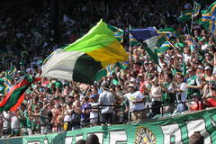 Portland Timbers Army Jeld-Wen Field Royalty Free Stock Photos
