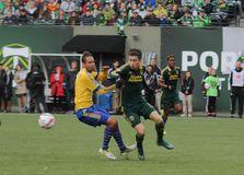 Portland Timbers soccer Royalty Free Stock Images