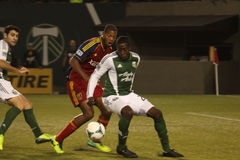 Portland Timbers vs Salt Lake Stock Photos