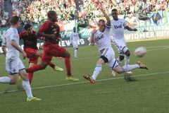 Portland Timbers vs White caps Royalty Free Stock Images