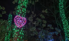 Neon pink heart on a tree. Portland, OR / USA - December 21 2018: Heart made out of pink neon light strip at Portland ZooLights outdoor exhibit stock image