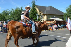 Portland, USA - July 4, 2012:  Men on cow parade in Independence Stock Photography