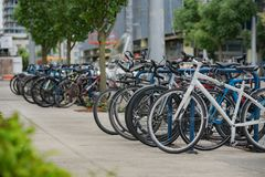Rows of bicycles parked at the entrance to OHSU royalty free stock photos