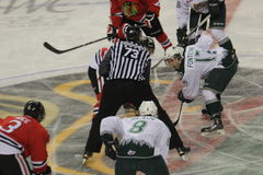 Portland Winterhawks and Everett Silvertips faceoff. The faceoff in WHL game with Portland Winterhawks and Everett Silvertips Stock Photos