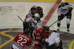 Portland Winterhawks face off Stock Photography