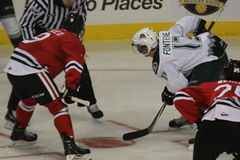 Portland Winterhawks gegen Everett Silvertips Lizenzfreie Stockfotos