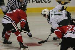 Portland Winterhawks vs Everett Silvertips Royaltyfria Foton