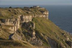 Portlandzki Dorset Zdjęcia Royalty Free
