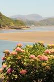 Portmeirion em Gwynedd, Gales norte Fotos de Stock Royalty Free