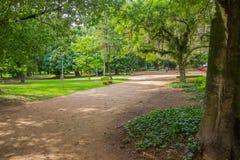 PORTO ALEGRE BRASILIEN - MAJ 06, 2016: bänk på sidan av en liten väg inom en parkera som omges av träd Arkivfoto
