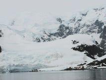 Porto a Antártica do paraíso Fotografia de Stock
