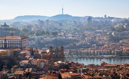 Porto from Clerigos Tower Stock Image