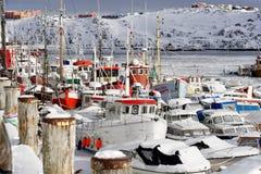 Porto congelato. Fotografie Stock