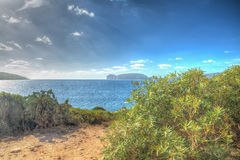 Porto Conte coastline in hdr Royalty Free Stock Photography