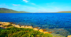 Porto Conte shore on a clear summer day Royalty Free Stock Photo