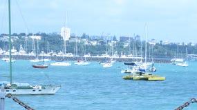 Porto da baía de Okahu Imagens de Stock Royalty Free