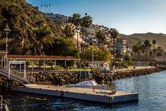 Porto de Avalon em Catalina Island imagem de stock royalty free