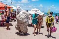 Porto de Galinhas, Pernanbuco, Brasil - em janeiro de 2018: Alaursa ou o ala Ursa, são um urso da cultura do carnaval em Pernambu fotografia de stock royalty free