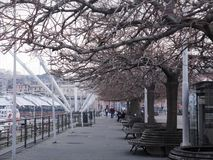 Porto de Genebra foto de stock royalty free