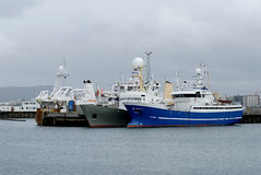 Porto de Reykjavik Fotografia de Stock Royalty Free