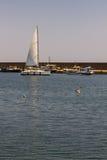 Porto de Tomis em Constanta Romênia Fotografia de Stock Royalty Free