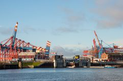 Porto del contenitore di Amburgo Immagini Stock