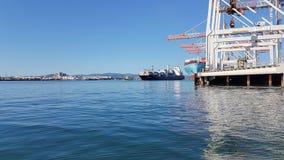 Porto del terminale di contenitore di Tauranga Fotografie Stock Libere da Diritti