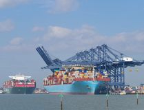 Porto della nave porta-container messa in bacino felixstowe fotografie stock libere da diritti