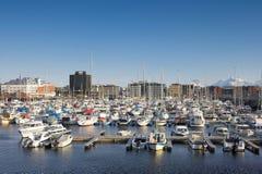 Porto di Bodo, Norvegia immagini stock libere da diritti