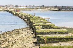 Porto di Chichester, resti del ponte ferroviario di Hayling Billy immagini stock libere da diritti