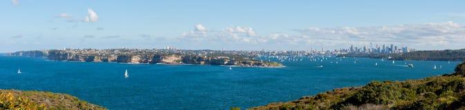 Porto di Sydney panoramico Immagini Stock Libere da Diritti