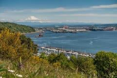 Porto di Tacoma e della montagna Fotografia Stock