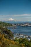 Porto di Tacoma e della montagna 6 Immagini Stock