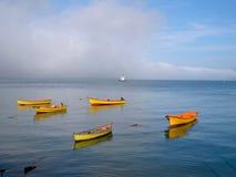 Porto di Valdivia, Cile Fotografia Stock