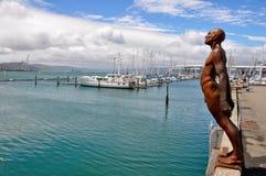 Porto di Wellington, Nuova Zelanda fotografie stock libere da diritti