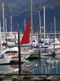 Porto do barco de Seward na baía Alaska EUA da ressurreição imagens de stock royalty free