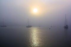 Porto e barche a vela nebbiosi Immagini Stock