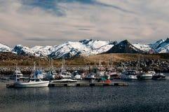 Porto em Lofoten-ilhas Fotos de Stock