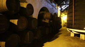 Porto Ferreira Winery stock video