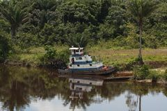 Porto fluvial na selva imagens de stock