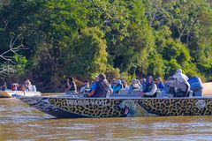 PORTO JOFRE, MATO GROSSO, BRAZIL, JULY 27, 2018: Tourists and guide on boat tour for Jaguar wildlife watching, Pantanal. PORTO JOFRE, MATO GROSSO, BRAZIL, JULY stock image