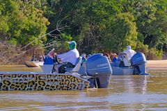PORTO JOFRE, MATO GROSSO, BRAZIL, JULY 27, 2018: Tourists and guide on boat tour for Jaguar wildlife watching, Pantanal. PORTO JOFRE, MATO GROSSO, BRAZIL, JULY royalty free stock image
