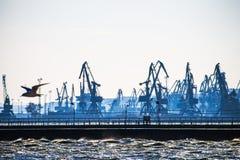 Porto marítimo na noite da manhã, fundo industrial da natureza, paisagem Foto de Stock