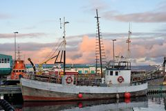 Porto marittimo di Reykjavik fotografie stock libere da diritti